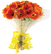 12 Gerberas Bouquet delivery in Rajkot