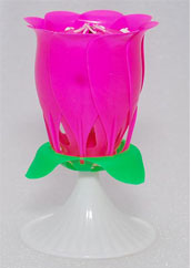 Flower Musical Candle Online delivery in Nagpur - Shopnideas