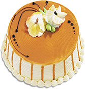 Royal Butterscotch Cake Online delivery in Nagpur - Shopnideas