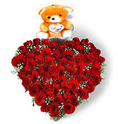 50 red roses with teddy bear