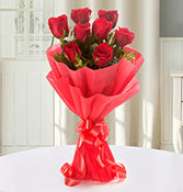 Enigmatic 8 Red Roses 1 Online delivery in Nagpur - Shopnideas